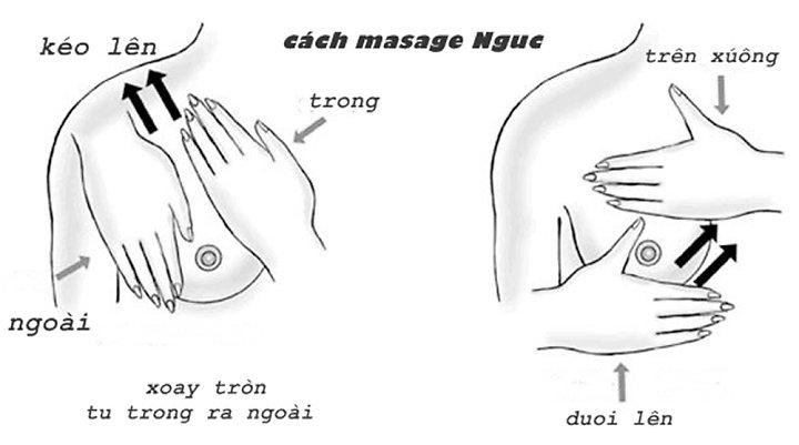 Cách massage ngực