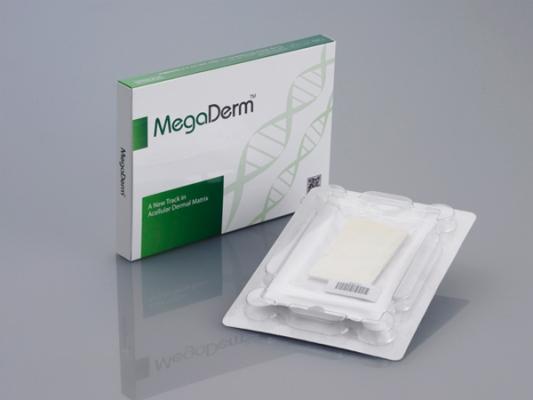MegaDerm05