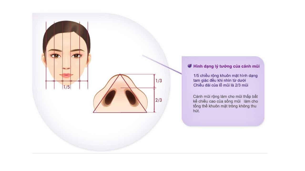 cắt cánh mũi-hình 3