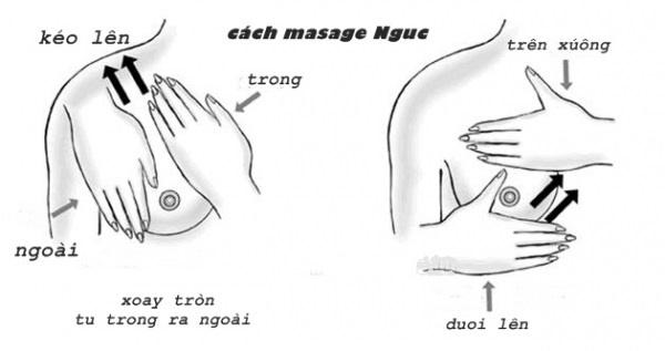 Học lõm những cách làm ngực to tròn đẹp tại nhà_3